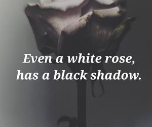 beautiful, black, and dark image