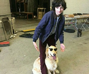 finn wolfhard, stranger things, and dog image