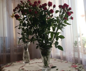 light, roses, and tender image