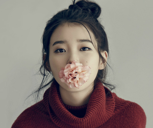 flower, iu, and red image
