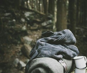 forest, travel, and camping image