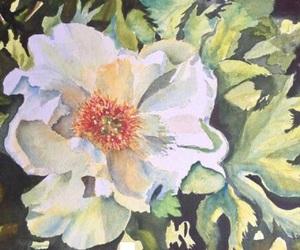 gardenia and ladysuzanne image