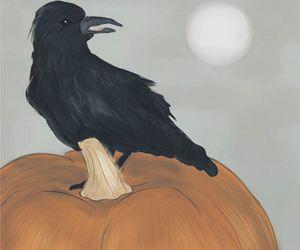 digital, illustration, and pumpkin image