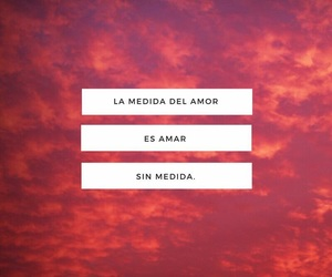 background, colorful, and frase image