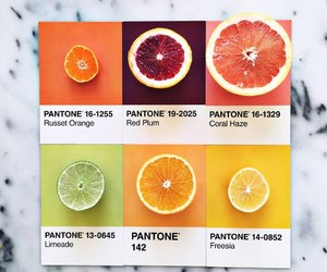 food, pairs, and pantone image