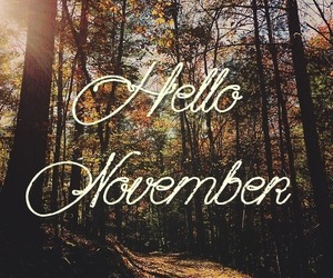 november and hello november image