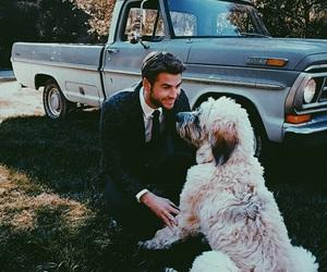 liam hemsworth, dog, and liam image