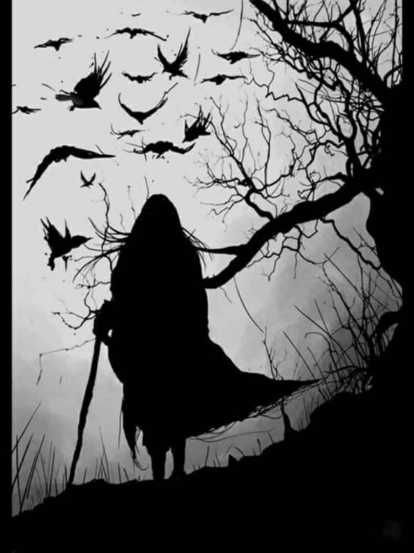 dark, bird, and crow image