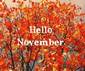 autumn, month, and hello november image