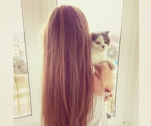 brunette, cat, and fashion image