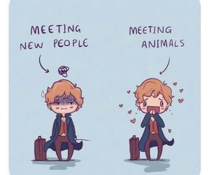 art, harry potter, and newt scamander image
