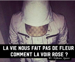 fleur, phrase, and rose image