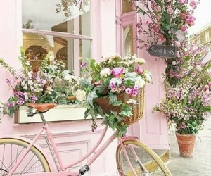 flowers, pink, and bicycle image