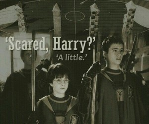 harry potter, quidditch, and oliver wood image