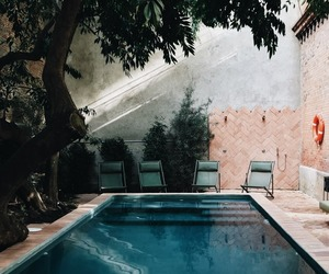 pool and tree image