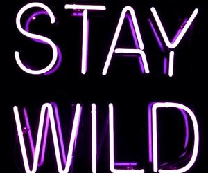 wild, light, and neon image