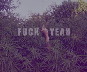 fuck, weed, and smokeweed image