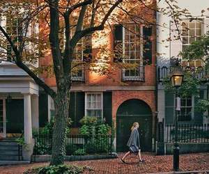 fall, street, and home image