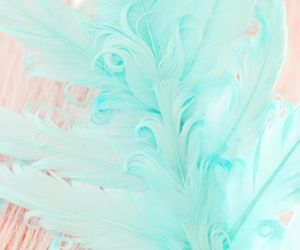 feather and pastel image