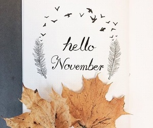 november, fall, and autumn image
