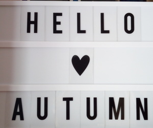 autumn, lightbox, and fall image