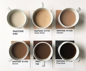 coffee, brown, and pantone image