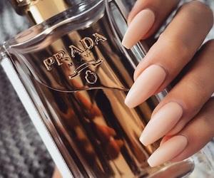 nails, perfume, and Prada image