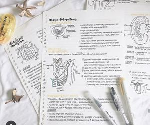 school, studyblr, and study image