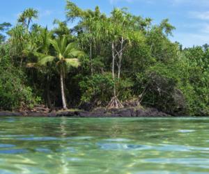 hawaii, tropics, and water image