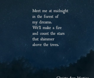 midnight, poetry, and quotes image