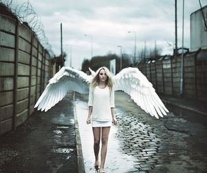 angel, white, and wings image
