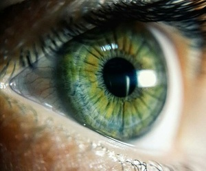 eyes, green, and green eyes image