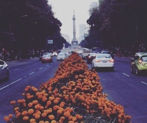 city, flower, and Halloween image