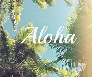 Aloha, palmtrees, and backgrounds image