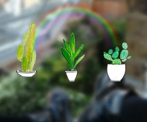 wallpaper, rainbow, and green image