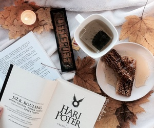 autumn, book, and bookish image