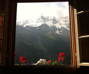 flowers, mountains, and window image