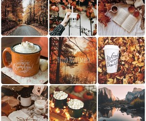 automne, cocooning, and fall image