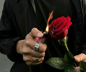 rose, fire, and boy image