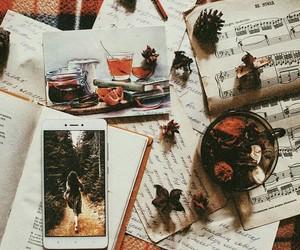 aesthetics, autumn, and fall image