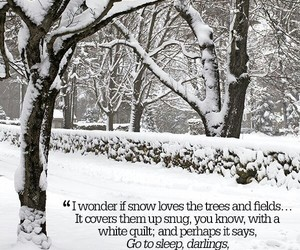 snow, quotes, and winter image