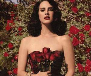 lana del rey, rose, and red image