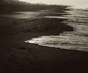 beach, flickr, and photography image
