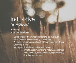 definition, dictionary, and intuitive image