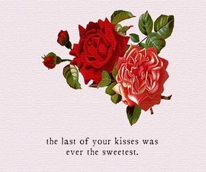 kiss, quotes, and roses image
