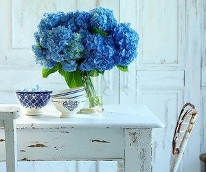 blue, flowers, and old image