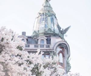 aesthetic, blossom, and city image