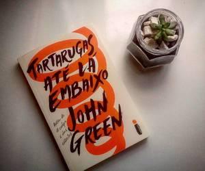 book, john green, and dftba image