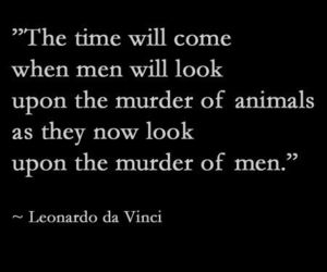 animal rights, murder, and quote image