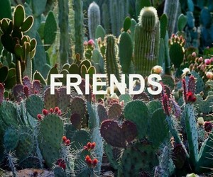 cactus, friends, and grunge image